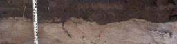 Sedimentgeochemie