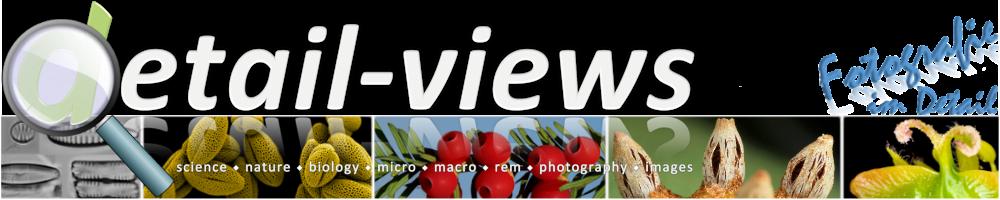 DetailViews Banner